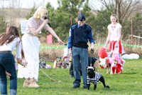 Happy dog show 2014